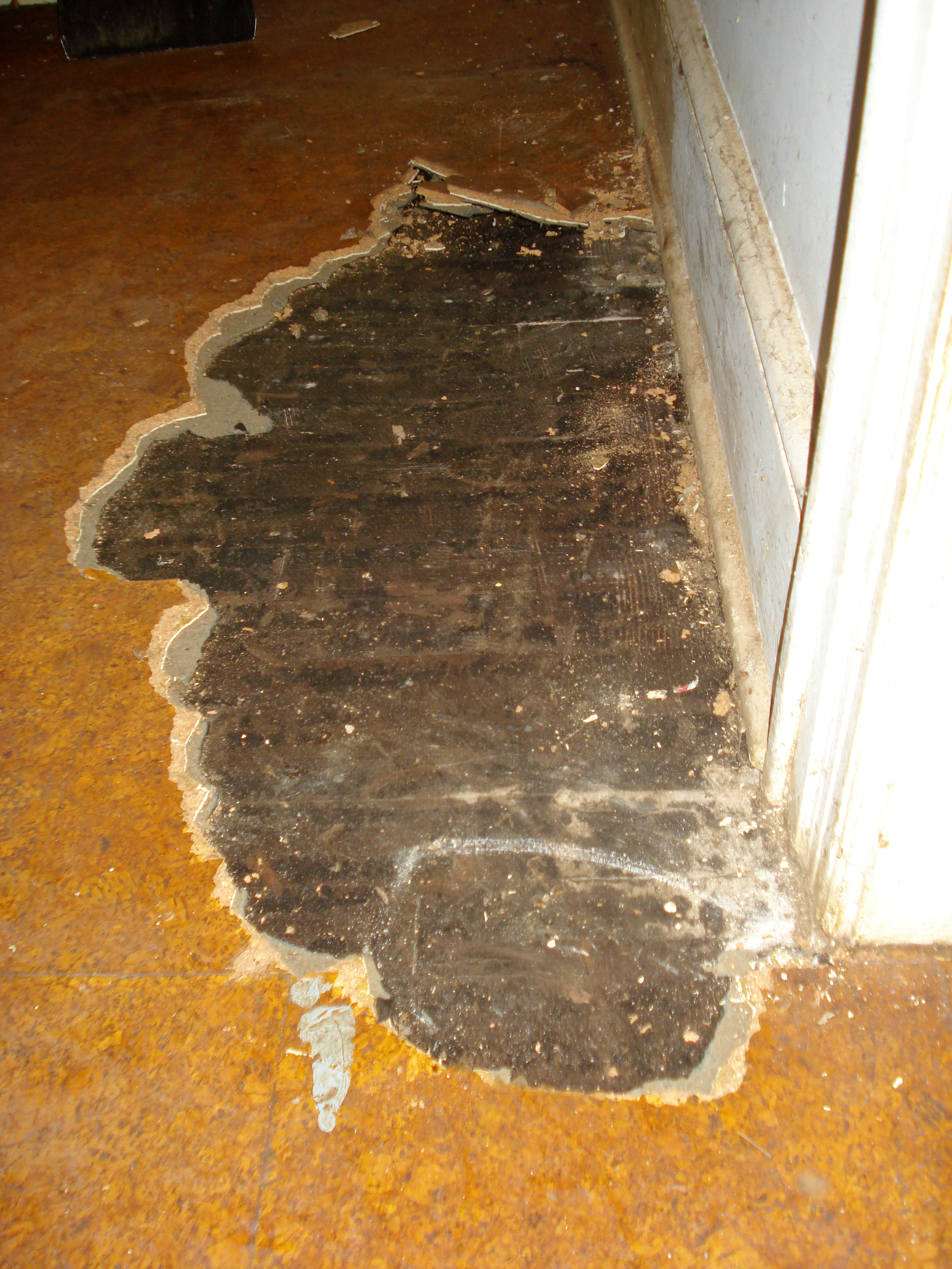 Carpet Cleaning Spokane Images Cheap