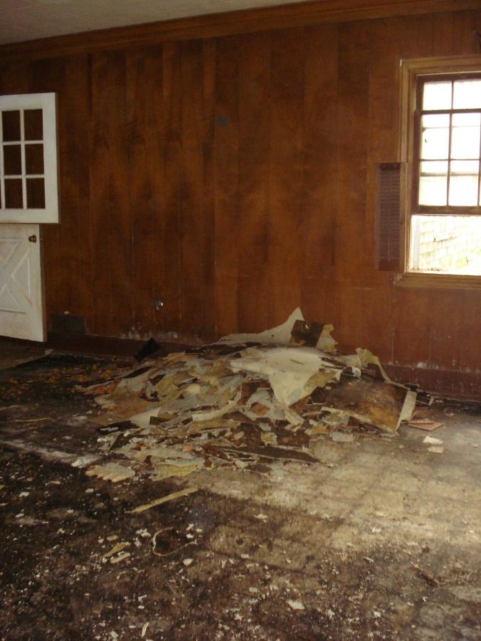 Then linoleum floor tiles had to be scraped up!