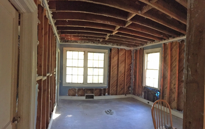 "All the demo is done except the plaster left around the ""edges"" of each room."