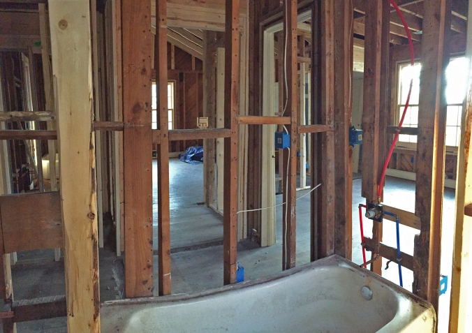 Hall bathroom shower is in!