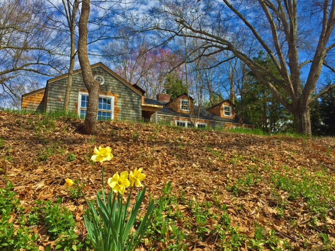 The Newton Nest_SPRING_IMG_7749 copy