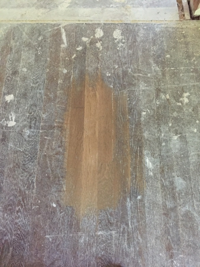 Test patch to discover what species of wood we have under all that gunk. White oak it is!